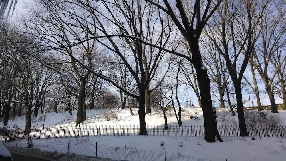 Riverside Park in snow